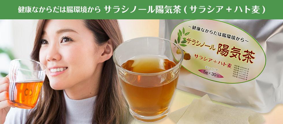 サラシノール陽気茶